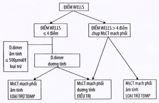Phác đồ chẩn đoán dựa vào điểm Wells và D dimer